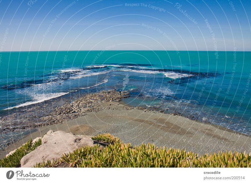 New Zealand 68 Umwelt Natur Landschaft Urelemente Erde Sand Wasser Himmel Wolkenloser Himmel Schönes Wetter Pflanze Gras Sträucher Wildpflanze Hügel Felsen