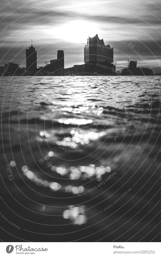 Morgens in Hamburg Stadt Wasser weiß schwarz Architektur Gebäude grau Deutschland Stimmung Hochhaus Europa Fluss Bauwerk Sehenswürdigkeit Skyline