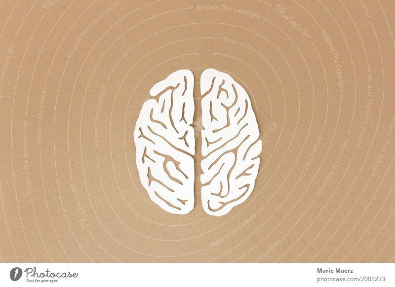 Linke und rechte Gehirnhälfte illustriert aus Papier Gehirn u. Nerven Denken Kommunizieren außergewöhnlich braun weiß Stress Bildung Gesundheit Inspiration