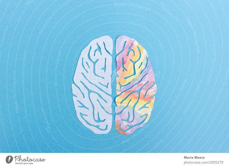 Linke Gehirnhälte, Rechte Gehirnhälfte - Logik & Kreativität Gehirn u. Nerven Denken lernen lesen Zusammensein Neugier blau mehrfarbig Kraft Erfahrung Idee