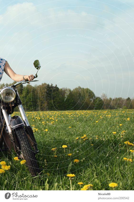 Motorbiene Lifestyle Freizeit & Hobby Mensch Natur Himmel Wolken Frühling Schönes Wetter Gras Wiese Wald Motorrad Freiheit Nostalgie Pause