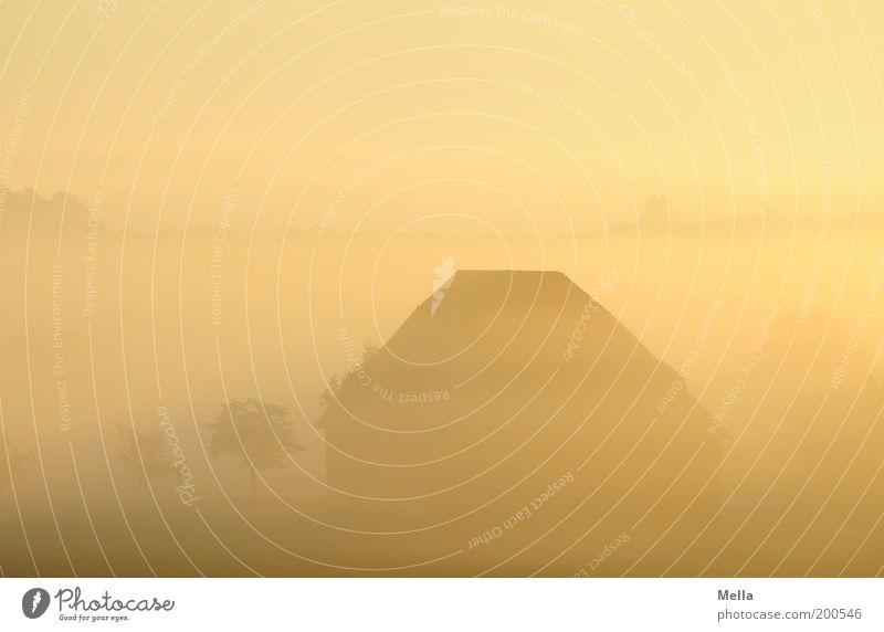Wallungen Umwelt Landschaft Sonnenaufgang Sonnenuntergang Klima Wetter Nebel Grundbesitz Landleben ländlich Dorf Hütte Scheune Dach natürlich schön Stimmung