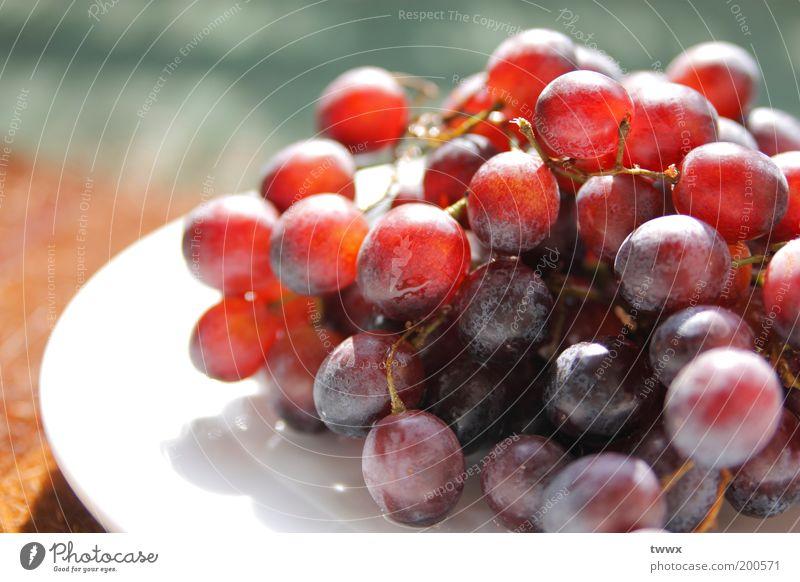 Traub Dich! Lebensmittel Frucht Weintrauben Picknick Teller Diät frisch Gesundheit glänzend rund saftig blau mehrfarbig rot ruhig Farbe Wellness Vitamin süß