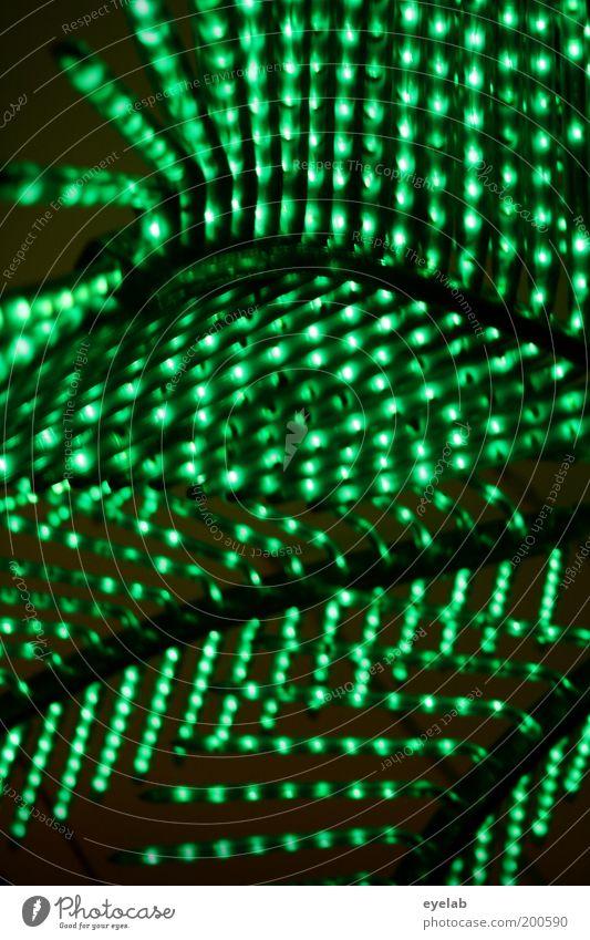 Der elektrische Süden grün Lampe Beleuchtung Kitsch Dekoration & Verzierung leuchten trashig Palme bizarr Muster Lichterkette abstrakt Leuchtkörper Veranstaltungsbeleuchtung Leuchtkraft