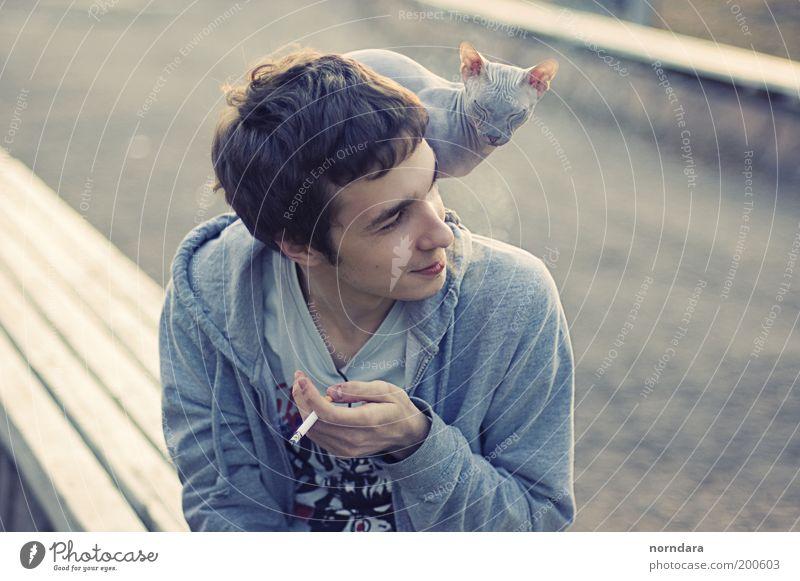 Mensch Jugendliche schön Tier Haare & Frisuren Katze Park Luft Freundschaft lustig Erwachsene Finger Fröhlichkeit T-Shirt Tiergesicht