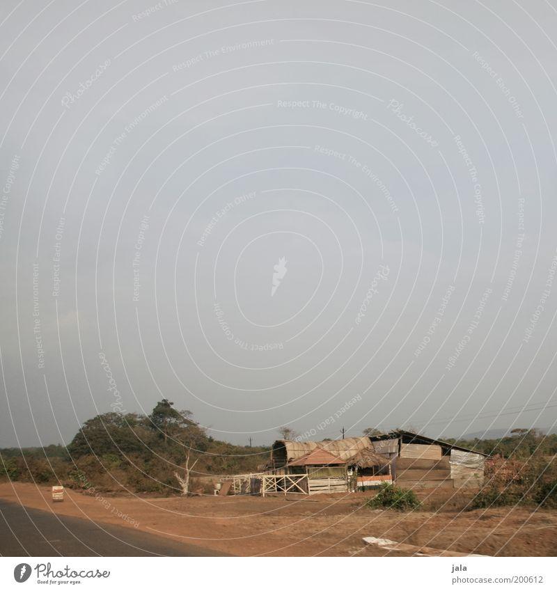 Behausung Natur Sommer Pflanze Indien Goa Haus Hütte Bauwerk Armut einfach trocken Ödland Farbfoto Außenaufnahme Menschenleer Textfreiraum oben