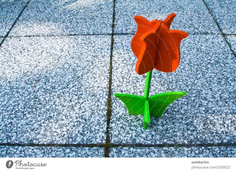 Blume Dekoration & Verzierung Filz Blüte Tulpe Garten Bürgersteig Bodenplatten Terrasse Fuge Sommer Stoffblüten künstlich Handarbeit