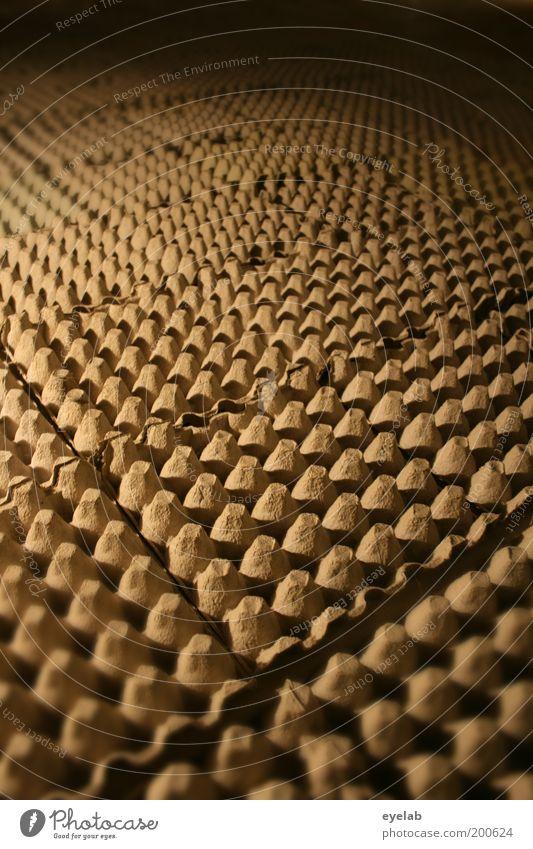Eierpappenparty Verpackung Billig braun Kreativität Ordnung akustisch eierpappe Karton Proberaum Isolierung (Material) Schall absorbtion laut Krach Lautstärke