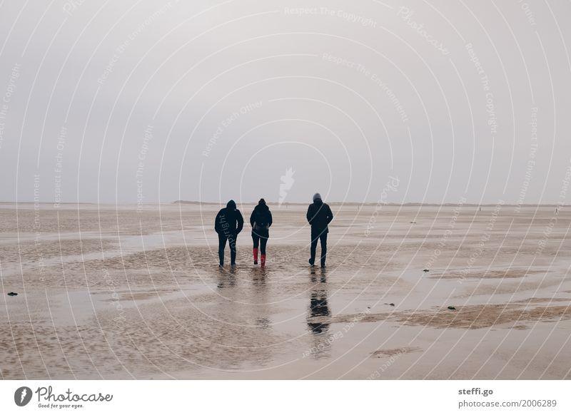 Neujahrsspaziergang Mensch Ferien & Urlaub & Reisen Erholung Ferne Winter Strand Erwachsene Leben Herbst Küste feminin Familie & Verwandtschaft Freiheit