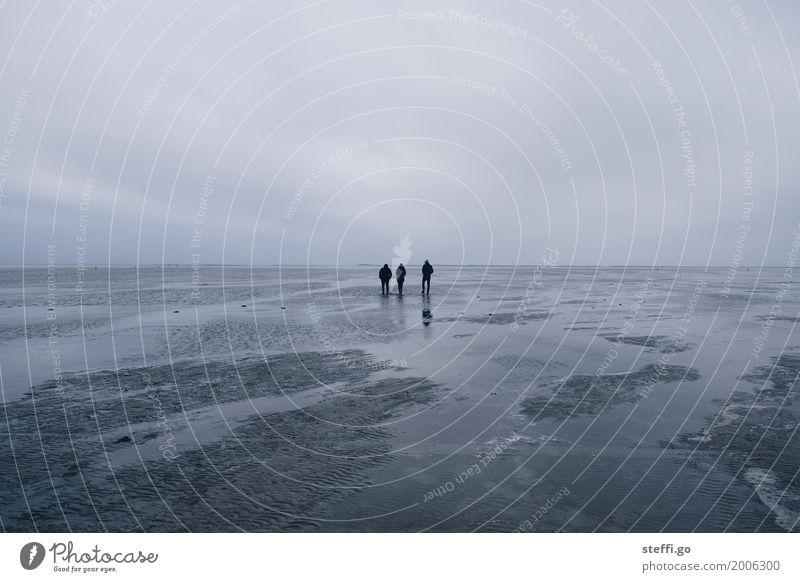 Neujahrsspaziergang II Mensch Erholung Ferne Winter Strand Erwachsene Leben Herbst Küste feminin Familie & Verwandtschaft Freiheit Freundschaft maskulin Ausflug