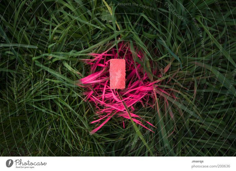 Markierung Baustelle Gras Holz Zeichen Schilder & Markierungen leuchten rosa planen skurril Wandel & Veränderung Grenze Orientierung Farbfoto Außenaufnahme