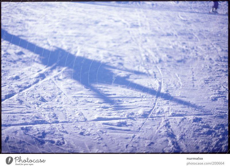 weisser Schatten Natur Ferien & Urlaub & Reisen Winter Umwelt kalt Schnee Freizeit & Hobby glänzend Skifahren Zeichen Textfreiraum Skifahrer Winterurlaub