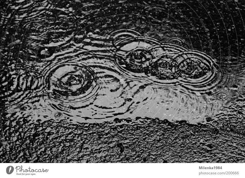 Lebenskreise Natur Urelemente Wasser Wassertropfen Klima Wetter schlechtes Wetter Regen Stein Tropfen kalt nass grau Regenringe Kreis rund Wasserring Boden