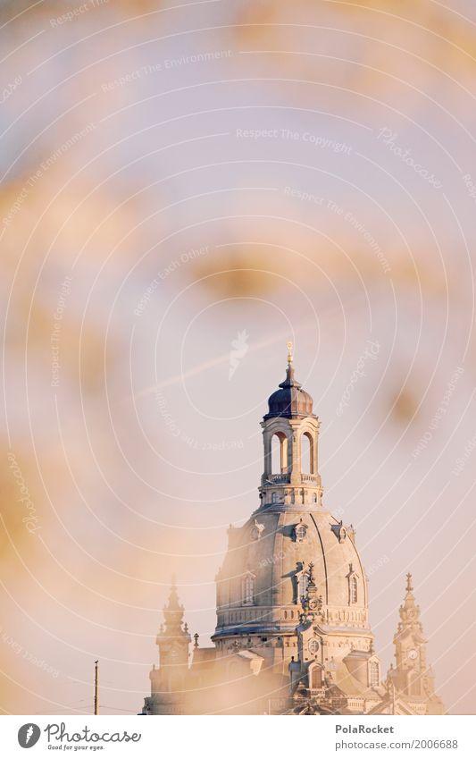 #A# Dresden im Frühling I Himmel Kunst ästhetisch Blühend Turm Kuppeldach Barock Frauenkirche Frühlingstag Frühlingsfarbe Elbufer Frühlingsfest Barockgarten