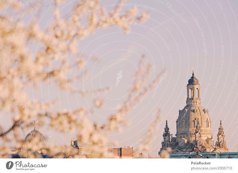 #A# Dresden im Frühling V Kunst Tourismus ästhetisch Zukunft Schönes Wetter Sehenswürdigkeit Gemälde Altstadt Städtereise Sachsen Kunstwerk Kuppeldach