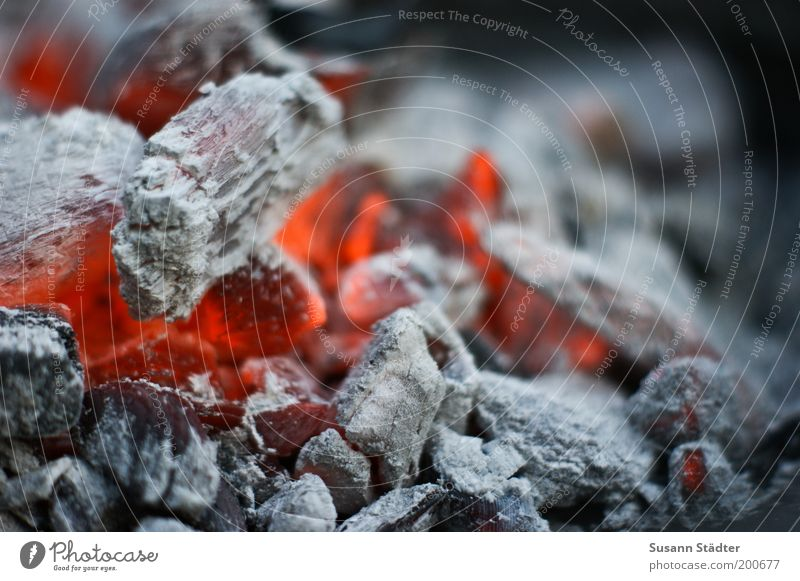 Der Sommer ist zum Grillen da rot Wärme Feuer heiß glühen Feuerstelle Brandasche Querformat rotglühend Feuerschein