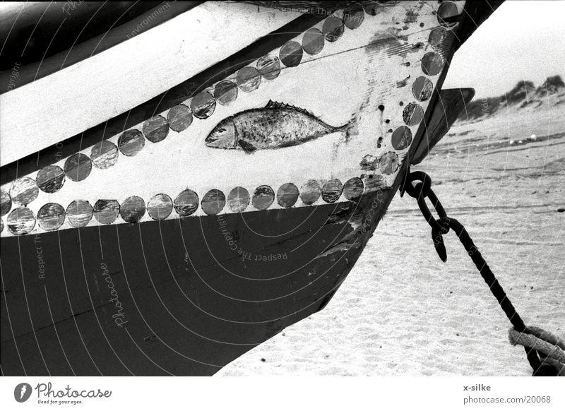 Boot Portugal Wasserfahrzeug Freizeit & Hobby