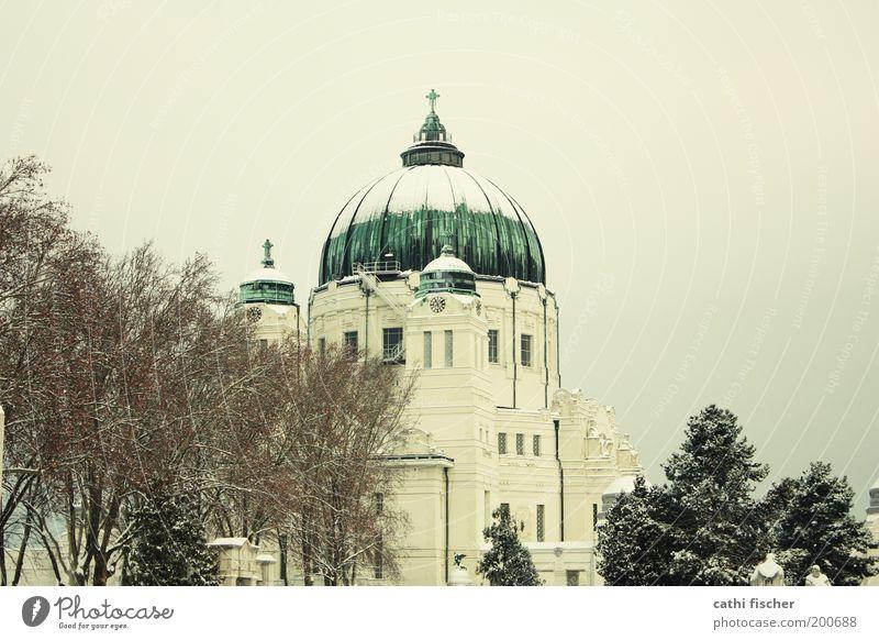 zentralfriedhof/winter Himmel Wolkenloser Himmel Winter Baum Park Wien Österreich Europa Hauptstadt Stadtrand Kirche Bauwerk Gebäude Dach Kuppeldach