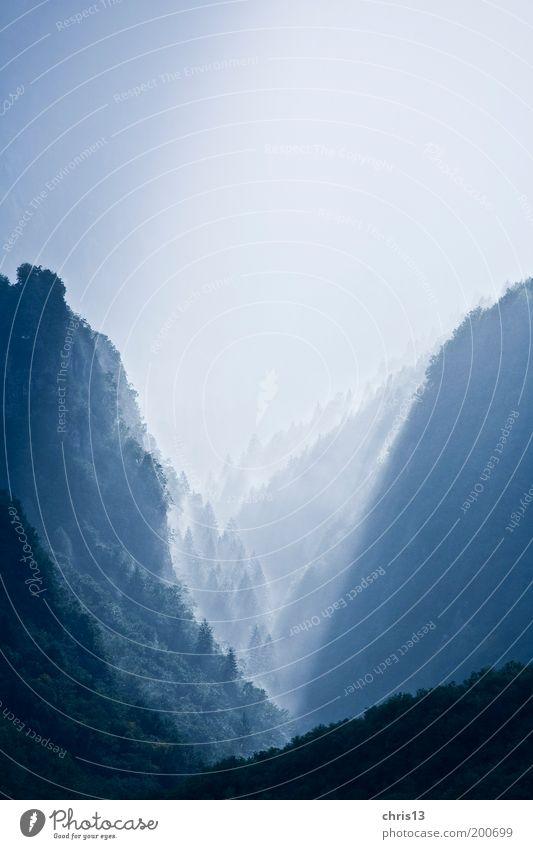 nebeltal Natur blau Baum Einsamkeit Freiheit Berge u. Gebirge Landschaft Umwelt Stimmung