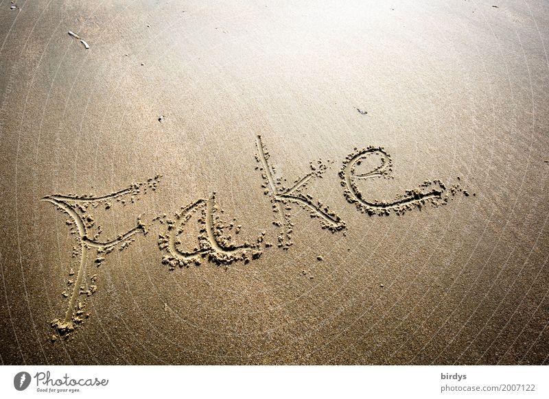 Fake Medien Neue Medien Internet Strand Sand Schriftzeichen leuchten einfach einzigartig braun gelb Laster Erfolg Macht Verantwortung Wahrheit authentisch Sorge