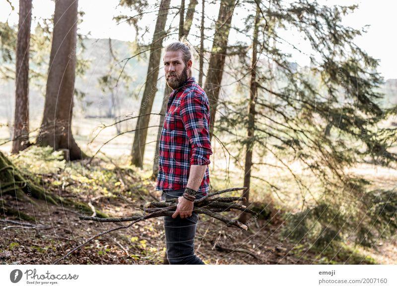Holz maskulin Junger Mann Jugendliche Erwachsene 1 Mensch 18-30 Jahre Umwelt Natur Landschaft Wald nachhaltig natürlich Hipster ansammeln Ast Naturliebe