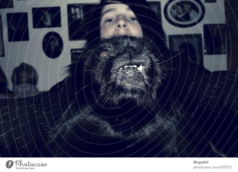 Kleine Bestie Mensch schwarz Tier kalt Hund Freundschaft Gebiss Tiergesicht bedrohlich Selbstportrait Haustier hässlich Bilderrahmen Junge Frau Porträt Blick