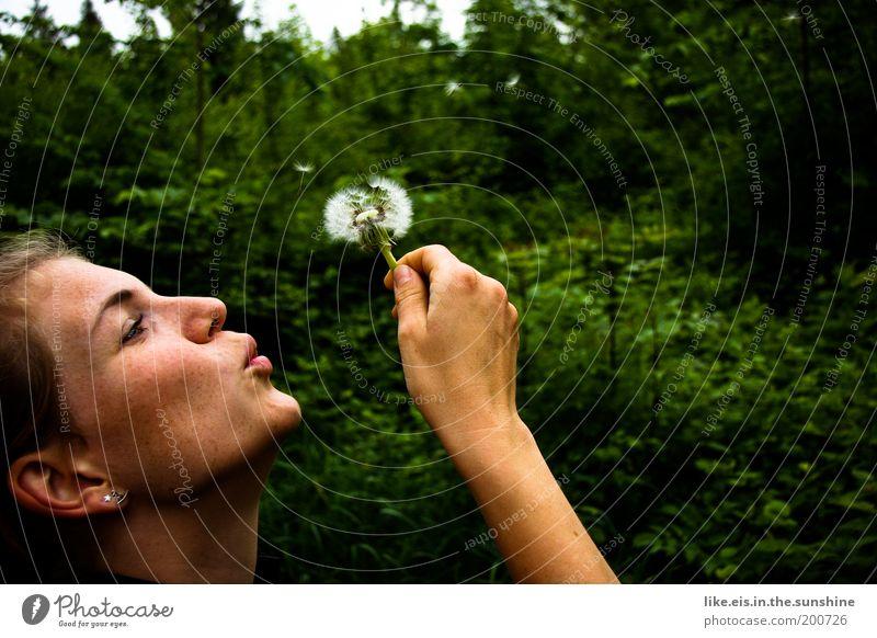 PUSTE*blume Frau Jugendliche Baum Blume grün Sommer Freude Wald Garten Glück träumen Park braun Erwachsene fliegen