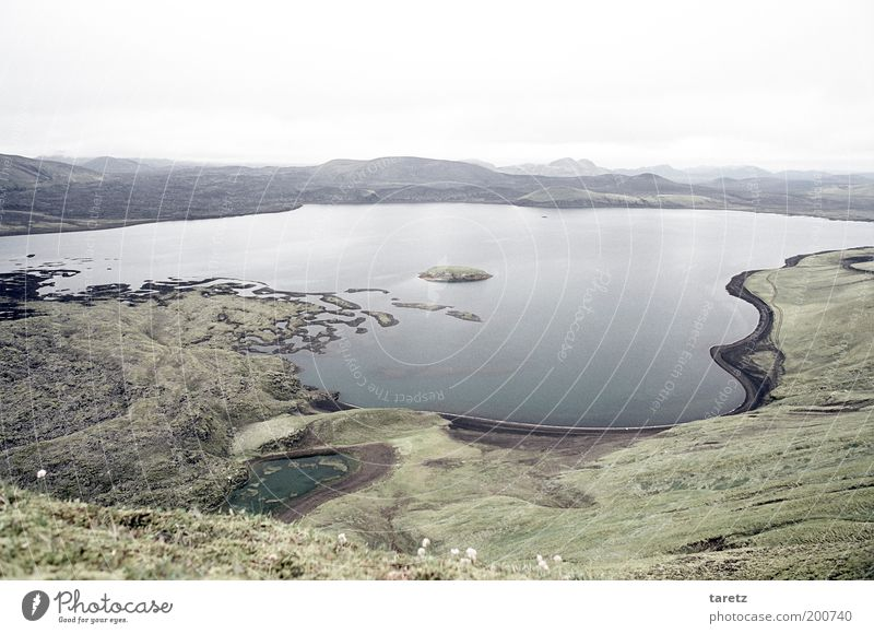 Lava, Moos und Wasser Natur grün ruhig Einsamkeit Ferne kalt Erholung Freiheit grau See Landschaft Umwelt Aussicht Hügel Seeufer Island