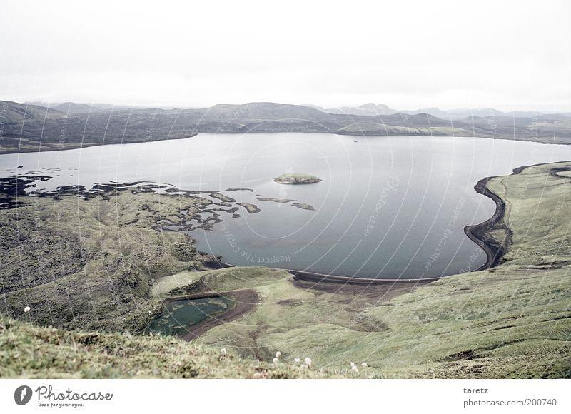 Lava, Moos und Wasser Umwelt Natur Hügel Seeufer Frostastaðavatn Einsamkeit Erholung Ferne Island kalt grau grün Landschaft Freiheit ruhig Landmannalaugar