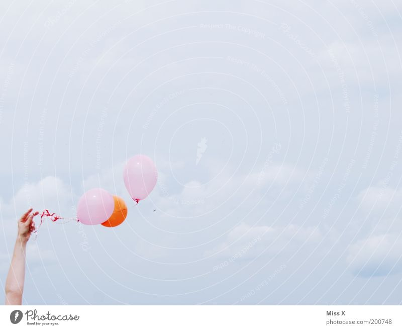 *Wink Mensch Hand Himmel Freude Wolken Party Gefühle Spielen Glück Zufriedenheit Stimmung Feste & Feiern orange Arme rosa