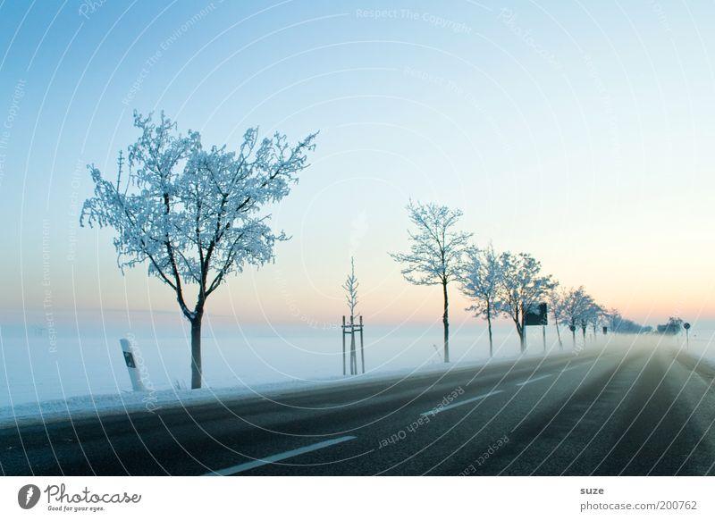 Kaltstart Umwelt Natur Landschaft Urelemente Himmel Wolkenloser Himmel Horizont Winter Schönes Wetter Nebel Eis Frost Schnee Baum Verkehr Verkehrswege Straße