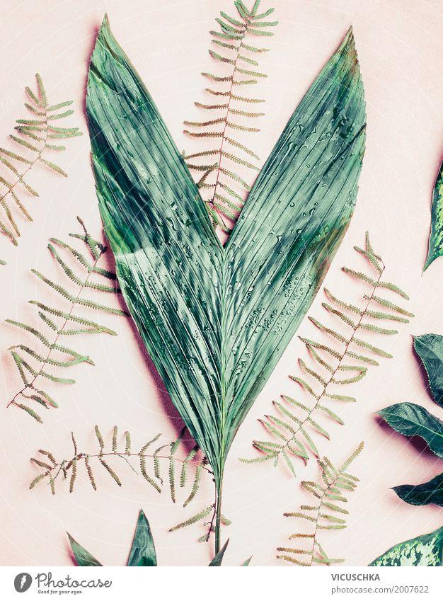Grüne Blätter Stil Design Sommer Dekoration & Verzierung Natur Pflanze Blatt Grünpflanze tropisch grün Palme Stillleben Pastellton rosa Farbfoto Studioaufnahme