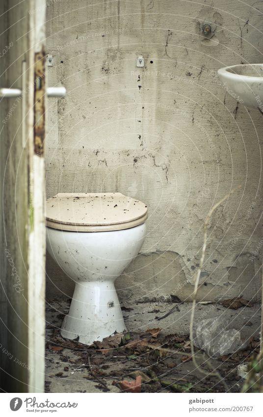 Stilles Örtchen Haus Fassade Tür Toilette Waschbecken alt trashig trist Traurigkeit Verfall Vergangenheit Vergänglichkeit Wandel & Veränderung Häusliches Leben