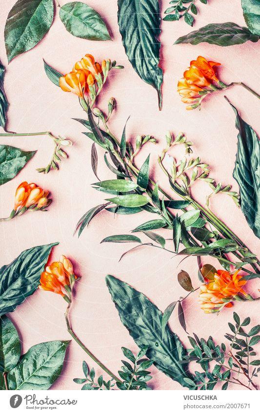 Composing mit Tropischen Blumen und Blättern Natur Pflanze Sommer grün Blatt Blüte Stil Design rosa Dekoration & Verzierung Blühend Blumenstrauß exotisch