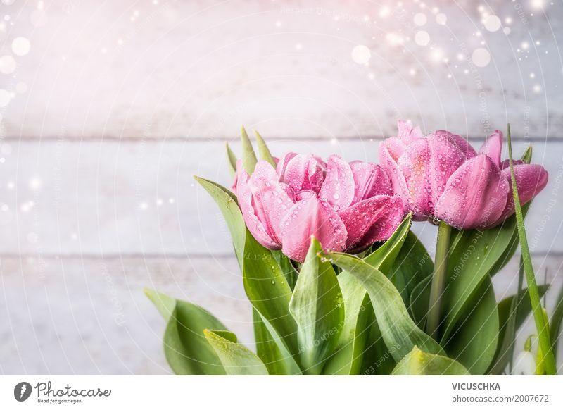 Rosa Tulpen auf hellem Hintergrund Stil Design Sommer Dekoration & Verzierung Feste & Feiern Valentinstag Muttertag Geburtstag Natur Pflanze Frühling Blume