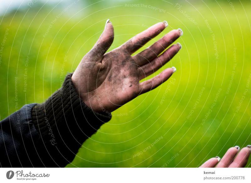 Hände wie ein Bauarbeiter Mensch Frau Natur Hand grün Pflanze Erwachsene Umwelt Wiese feminin braun dreckig Arme Haut wandern Armut