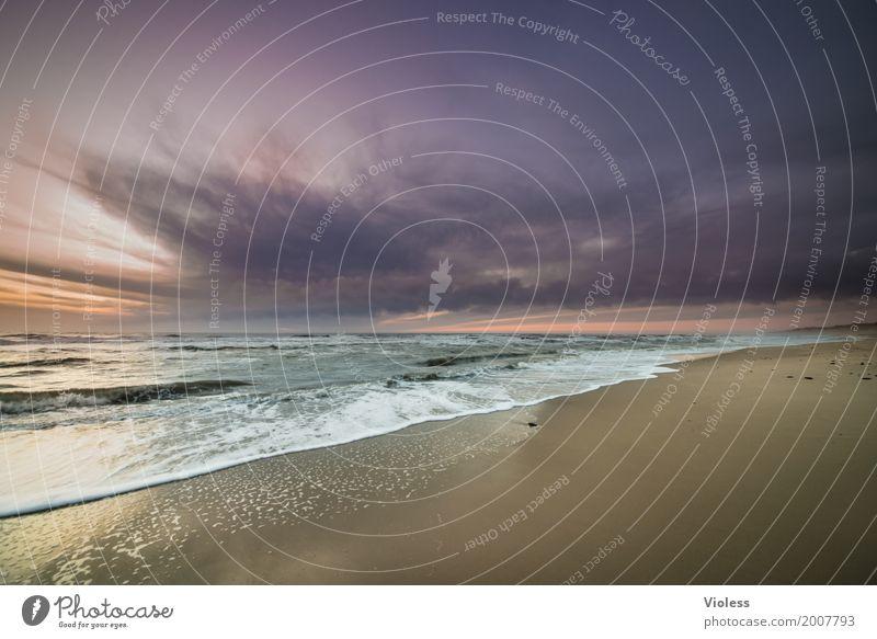 relaxed..... Umwelt Landschaft Urelemente Wasser Himmel Wolken Sonnenaufgang Sonnenuntergang Wellen Küste Strand Bucht Fjord Nordsee Meer Erholung Unendlichkeit