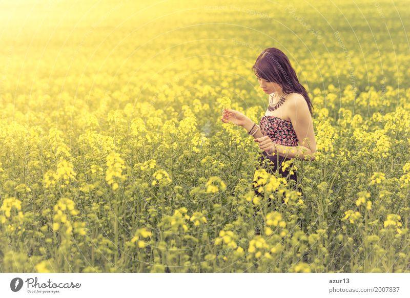 Beautiful woman in sunny summer meadow searching yellow flowers Mensch Frau Natur Jugendliche Pflanze Junge Frau Sommer schön grün Landschaft Erotik ruhig