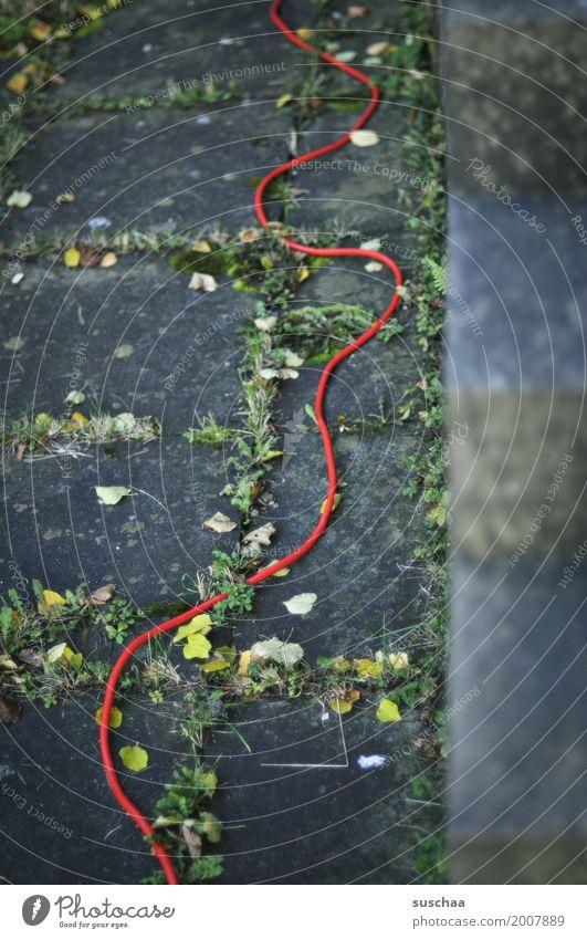 der rote faden Schnur rote schnur Leitfaden schlangenförmig Windung Schlauch Kabel stromanschluss stromversorgung Energie Licht