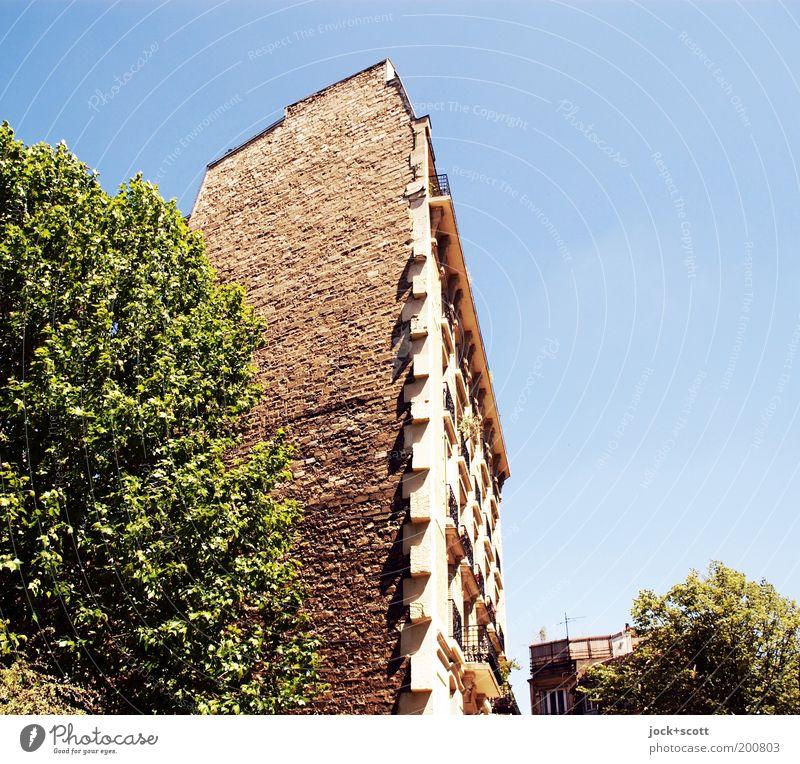 Pariser Chic & Cut Stadt blau grün Sommer Baum Haus Wärme Wand Mauer braun Fassade Häusliches Leben Perspektive Warmherzigkeit Schönes Wetter Schutz