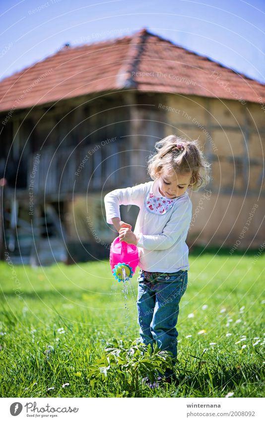 Kleiner Helfer Freiheit Sonne Gartenarbeit Wasserkanister Mensch Mädchen 1 3-8 Jahre Kind Kindheit Umwelt Natur Pflanze Himmel Wolkenloser Himmel Frühling Haus
