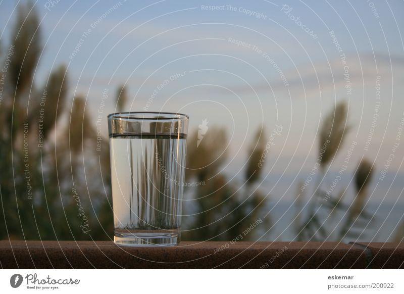 Glas Wasser Lebensmittel Getränk Erfrischungsgetränk Trinkwasser Wasserglas Natur Himmel Meer Mittelmeer einfach Gesundheit Sauberkeit Horizont Mauer Abend