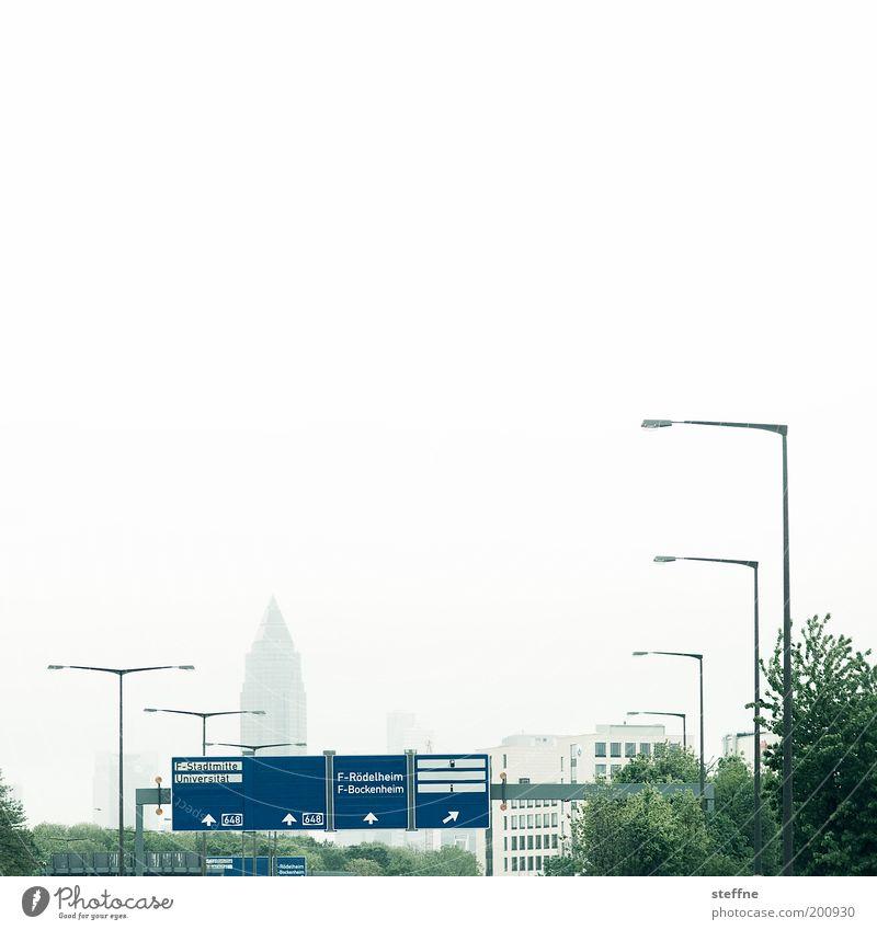 F.-Stadtmitte Baum Stadt Verkehr Autobahn Laterne Skyline Richtung Hinweisschild Frankfurt am Main Verkehrswege Autofahren Straßenbeleuchtung Verkehrsschild Verkehrszeichen Laternenpfahl