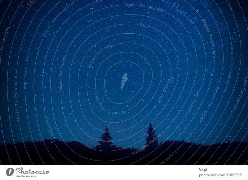 Dunkelblauer nächtlicher Himmel über dem Geheimniswald Tapete Natur Landschaft Wolkenloser Himmel Nachthimmel Stern Horizont Baum Wald Hügel Berge u. Gebirge