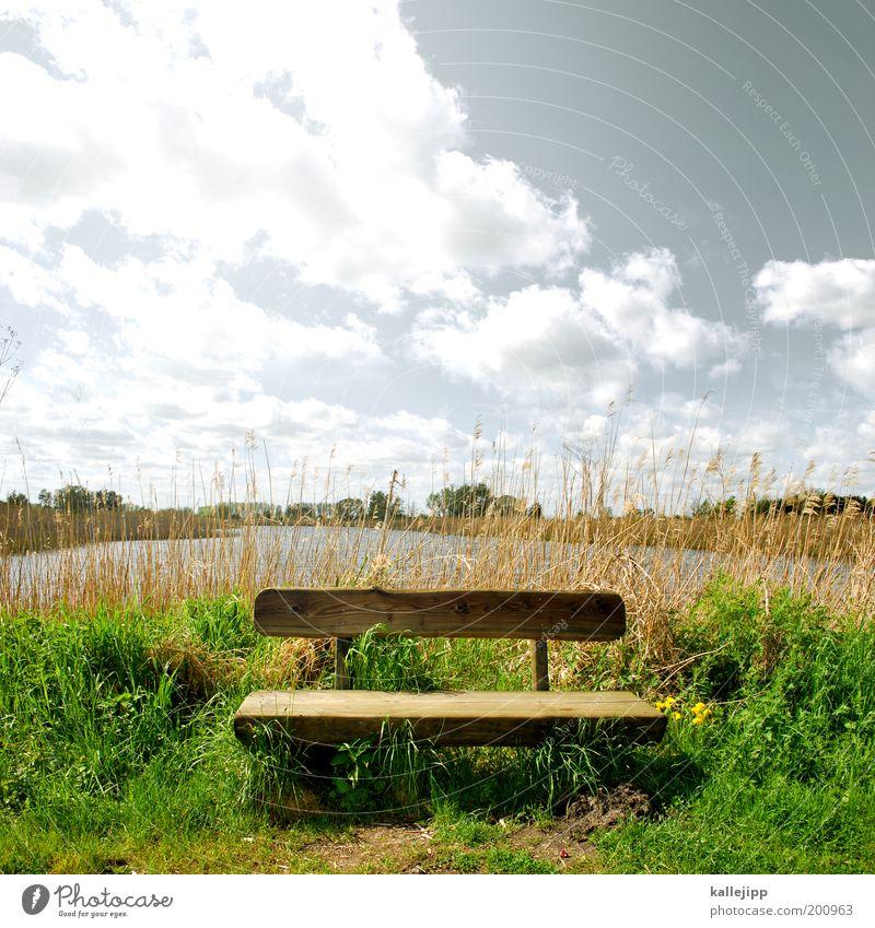 bankgeheimnis Himmel Natur Wasser Pflanze Sonne Ferien & Urlaub & Reisen Wolken ruhig Ferne Freiheit Umwelt Luft See Erde Ausflug wandern