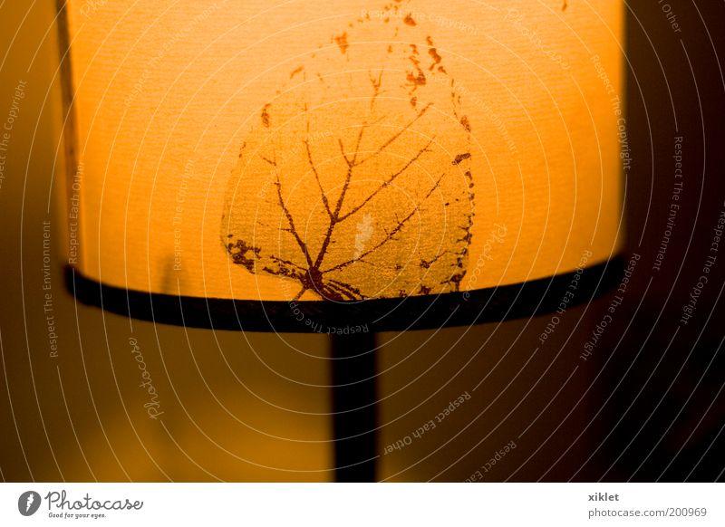 gelb Farbe dunkel Erholung Wärme Kerze Klima Dekoration & Verzierung Gelassenheit Kunststoff exotisch Tatkraft Reinheit