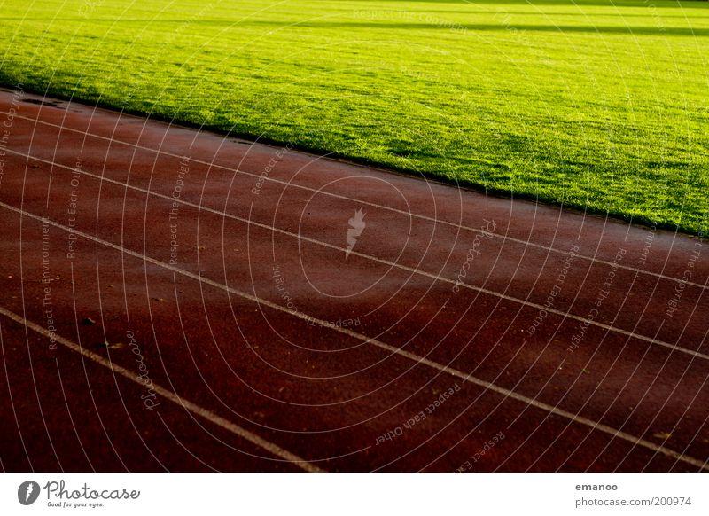 rennbahn Sport Leichtathletik Sportveranstaltung Sportstätten Fußballplatz Stadion Sonne Gras Wiese dunkel nass Wärme grün rot Linie Laufsport Sportplatz feucht