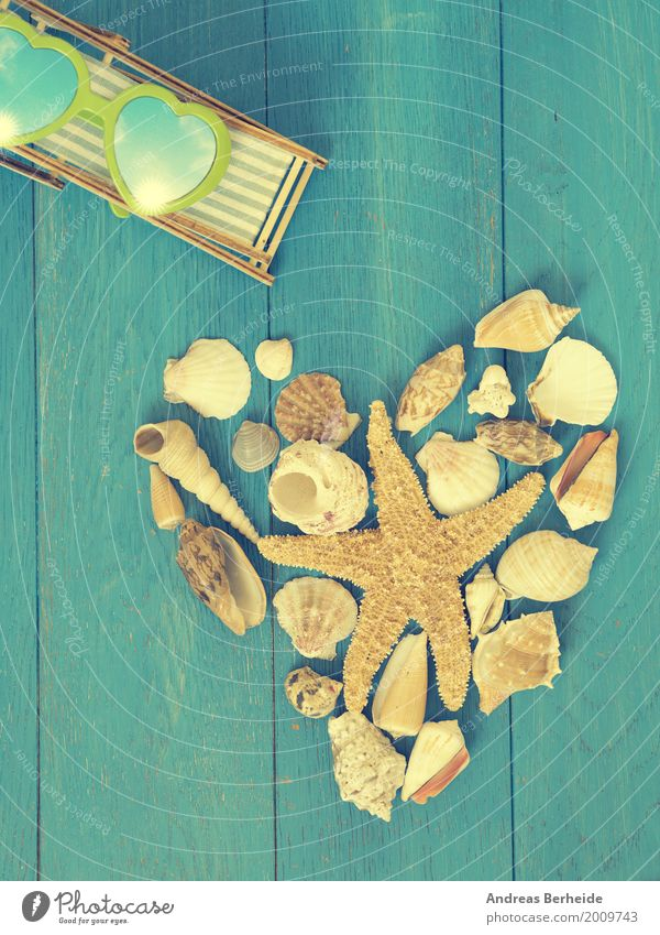 Auszeit Erholung Ferien & Urlaub & Reisen Sommer Strand retro heart shape shell sea holiday starfish Symbole & Metaphern romantic romance decoration shaped