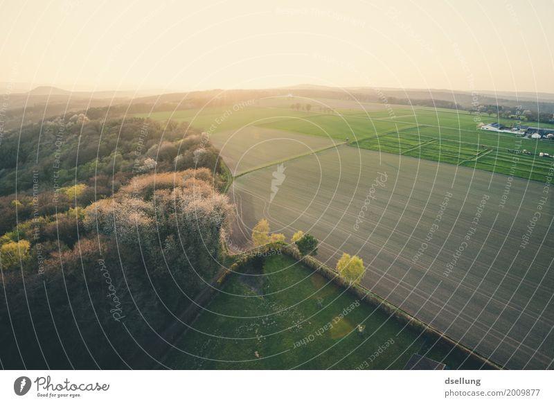 eifelidylle. Natur Ferien & Urlaub & Reisen grün Landschaft ruhig Wald Umwelt Frühling Wiese Gesundheit Freiheit Horizont frei Feld Wachstum frisch