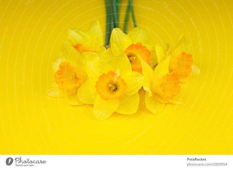 #AS# Ostergelb III Kunst ästhetisch Blume Blumenstrauß Ostern Narzissen knallig Natur Muttertag Farbfoto mehrfarbig Innenaufnahme Studioaufnahme Nahaufnahme